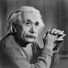 Albert einstein learning disability: true or false?