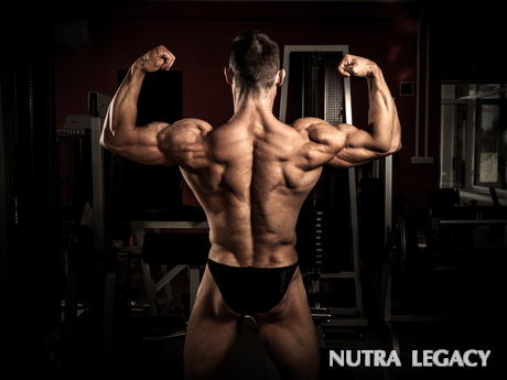 Creating An Effective Bodybuilding Back Workout Is Important If You Want To Get A Full And Overall Muscular Look