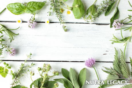 Herbal Acne Treatment