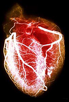 What Lies Behind Diastolic Heart Failure
